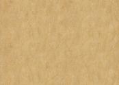 3173 van Gogh.jpg