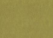 3239 olive green.jpg