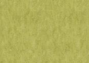 3224 chartreuse.jpg